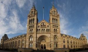 Thăm Bảo tàng Lịch sử Tự nhiên London hơn 130 năm tuổi