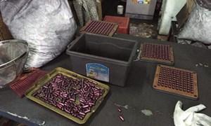 Vụ sản phẩm hỗ trợ chữa ung thư làm bằng bột than tre: Có thể bị xem xét 2 tội danh