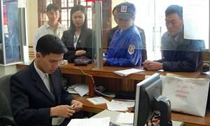 Sở Giao dịch hàng hóa: Rộng cửa cho cả doanh nghiệp nội, ngoại