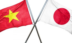 [Infographic] Thắt chặt quan hệ Đối tác chiến lược sâu rộng Việt Nam - Nhật Bản
