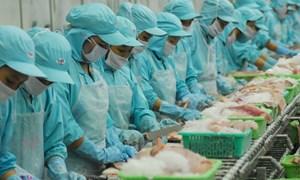 Một số vấn đề tài chính của các doanh nghiệp thủy sản Việt Nam