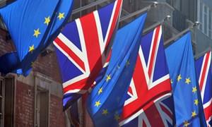 Hạ viện Anh bác đề xuất về tham gia khu vực kinh tế châu Âu