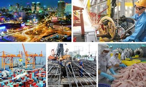 Giảm tác động của cuộc chiến thương mại Mỹ - Trung Quốc: Hướng vào thị trường nội địa