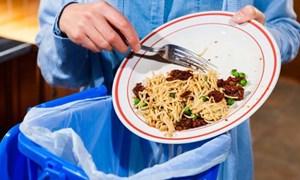 [Video] Thức ăn lãng phí mỗi năm đủ nuôi sống ba châu lục
