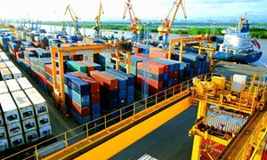 Xuất khẩu 6 tháng đạt 20,4 tỷ USD, doanh nghiệp Việt đang tận dụng rất tốt ưu đãi FTA
