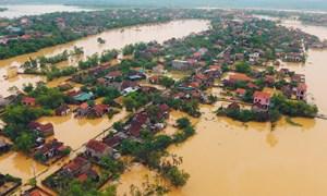 [Video] Kỹ năng mềm: Làm gì khi xảy ra lũ lụt?
