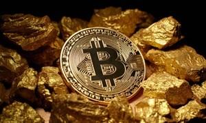 [VIDEO] Khám phá bí ẩn lớn nhất trong giới công nghệ (kỳ 3): Tại sao cả thế giới truy tìm nhân tố bí ẩn nắm giữ 1 triệu đồng bitcoin?