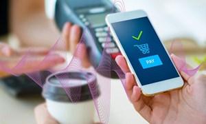 Các ngân hàng trung ương cảnh báo rủi ro thanh toán điện tử