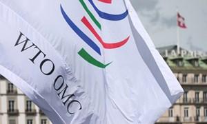 Các nước lớn đưa ra đề xuất cải cách WTO