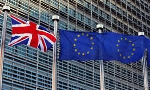 EU thông báo không tổ chức hội nghị về Brexit vào tháng 11