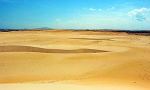 """[Video] """"Bức tường xanh"""" chặn bão cát trên sa mạc lớn nhất Trung Quốc"""