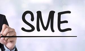 Khả năng tiếp cận tín dụng chính thức  của doanh nghiệp nhỏ và vừa