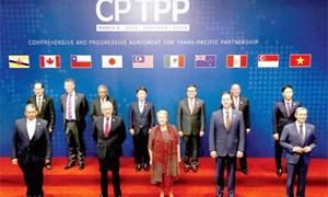 CPTPP xem xét kết nạp thành viên mới