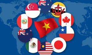 """[Infographic] CPTPP - """"điểm sáng"""" của thương mại toàn cầu"""