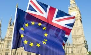 Tòa án châu Âu ấn định thời điểm xét xử vụ kiện về đảo ngược Brexit
