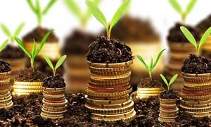 Dịch vụ tài chính nông nghiệp: Kinh nghiệm quốc tế và hàm ý cho Việt Nam