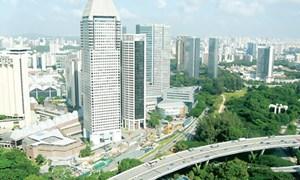 IMF: Các nước nên tranh thủ lãi suất thấp để đầu tư vào cơ sở hạ tầng