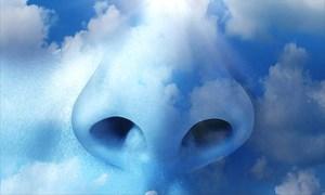 Mỹ thắt chặt các tiêu chuẩn về ô nhiễm không khí
