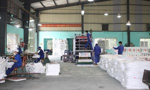 Phú Thọ: Huyện Lâm Thao thu hồi nợ đọng thuế đạt khá