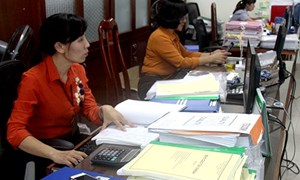 Cục Thuế Ninh Thuận: Đốc thúc xử lý dứt điểm các khoản nợ thuế