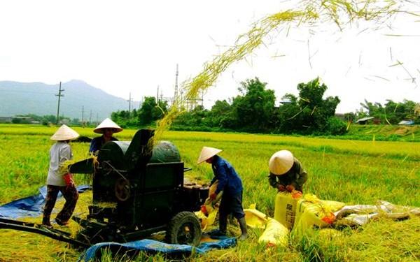 Chính sách tín dụng xây dựng nông thôn mới trên địa bàn tỉnh Quảng Ngãi