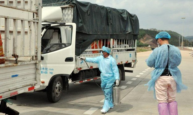 Trung Quốc tạm dừng nhập khẩu thanh long tại Quảng Ninh