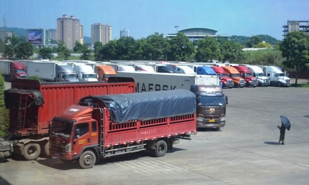 Thực hư hàng trăm container thanh long bị Trung Quốc cấm cửa?
