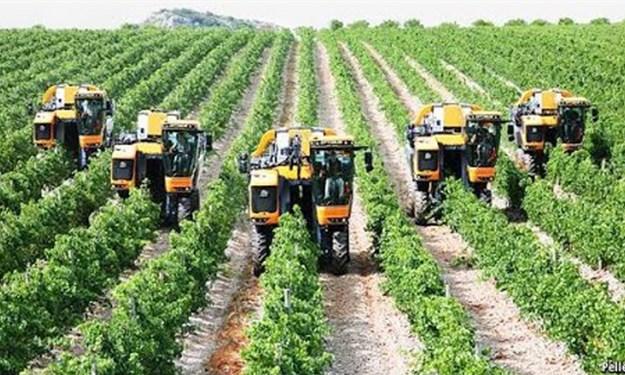 Giá trị sản xuất nông nghiệp tăng đều qua các năm