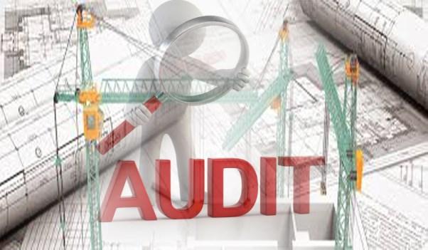 Chuyên môn hóa lĩnh vực kiểm toán, thanh tra, kiểm tra các công trình, dự án