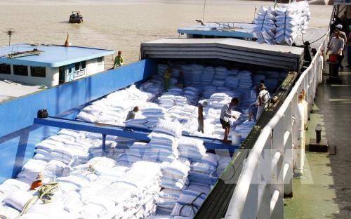Xuất khẩu hàng hóa của Đồng Tháp vượt mốc 1 tỷ USD