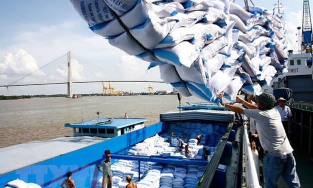 Xuất khẩu gạo 11 tháng năm 2019 đạt 5,91 triệu tấn
