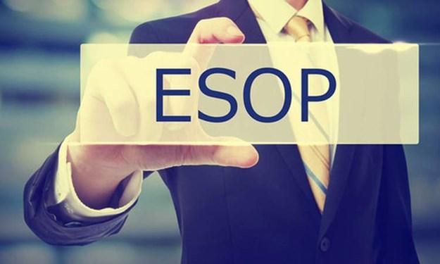 ESOP: Cuộc chiến của cổ đông nhỏ lẻ