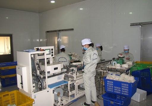 Giảm thiểu tối đa rủi ro sản xuất, kinh doanh nhờ áp dụng ISO 31000:2018