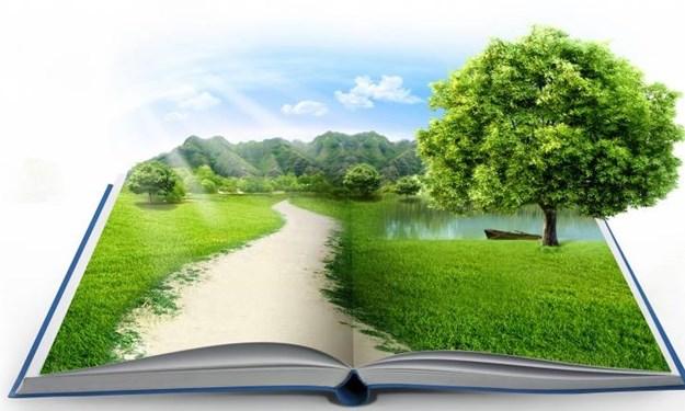 Vấn đề đặt ra trong thực hiện kiểm toán môi trường tại Việt Nam hiện nay