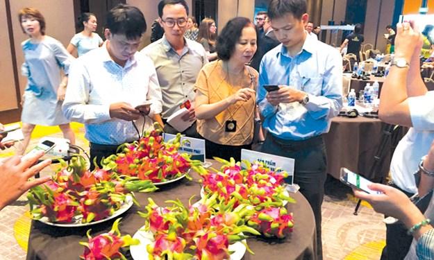 Khi trái cây Việt Nam được