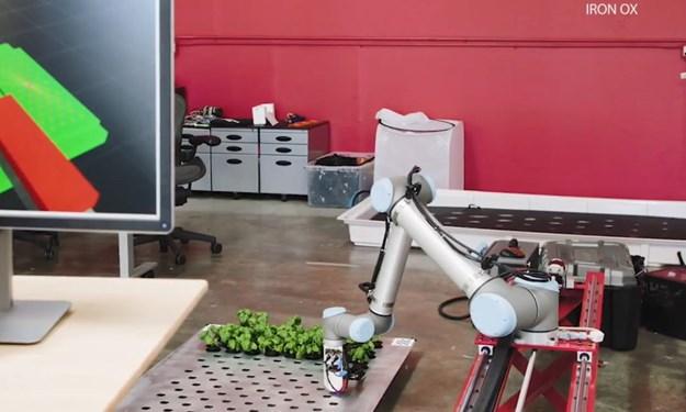 [Video] Nông trại do robot quản lý