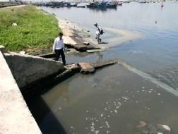 Đà Nẵng xử phạt nhiều công ty xả thải lậu