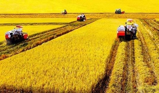 Kinh nghiệm quốc tế về chuyển đổi cơ cấu sử dụng đất nông nghiệp và gợi ý cho Việt Nam