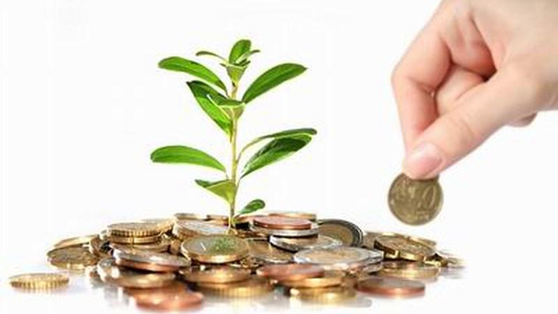 Tổ chức tài chính vi mô thực hiện thống kê tài khoản kế toán, báo cáo tài chính thế nào?