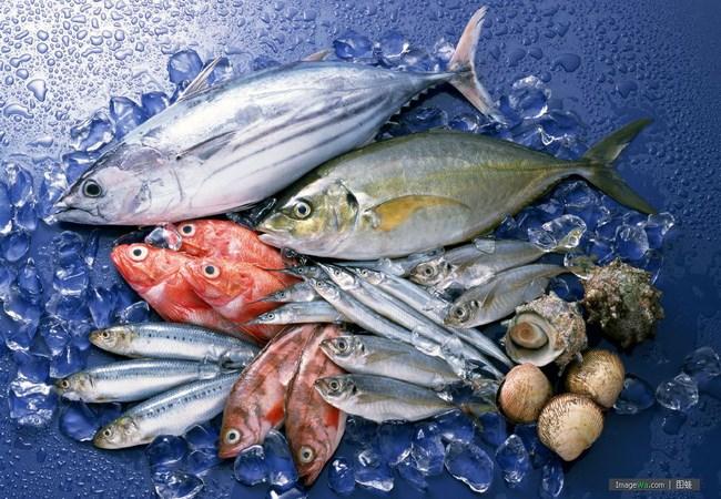 Xuất khẩu thủy sản: Hướng tới mục tiêu 10 tỷ USD