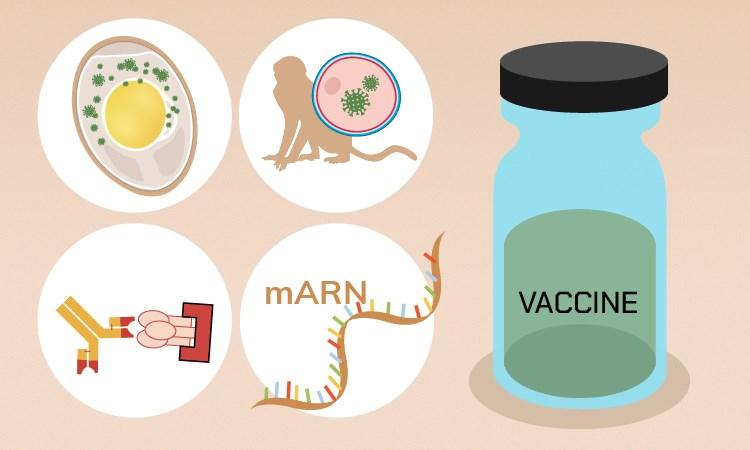 [Infographics] Các phương pháp hứa hẹn trong phát triển vaccine nCoV