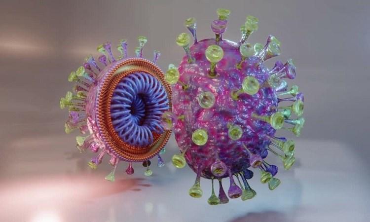 [Video] Vỏ bọc giúp nCoV qua mắt hệ miễn dịch
