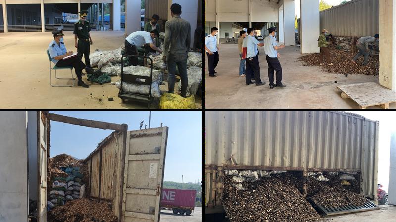 Hơn 24 tấn than giấu bên trong lô dăm gỗ xuất khẩu