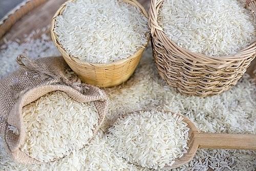 Giá gạo xu hướng giảm, thị trường giao dịch ảm đạm