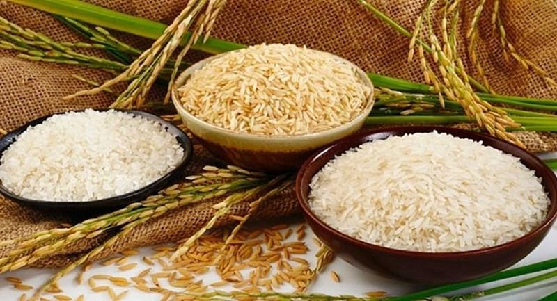 Giá lúa gạo ngày 4/6: Giá gạo tiếp tục giảm nhẹ