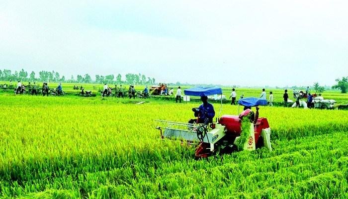 Gần 2 tỷ USD vốn ODA vào nông nghiệp