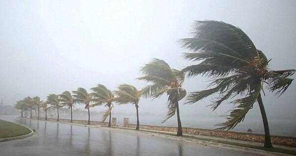 [Video] Dự báo đường đi của áp thấp nhiệt đới trên Biển Đông