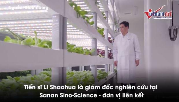 [Video] Đâu là giải pháp nuôi sống 10 tỷ người năm 2050?