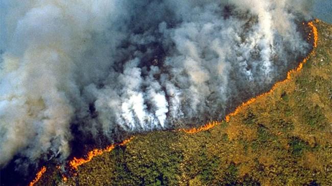 [Video] Rừng Amazon tan tác trong cơn hỏa hoạn tồi tệ nhất lịch sử