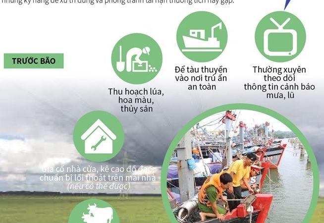 [Infographics] Kỹ năng ứng phó với thiên tai và bão lũ
